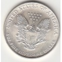 American Eagle USA 1 oz fine Silber Dollar
